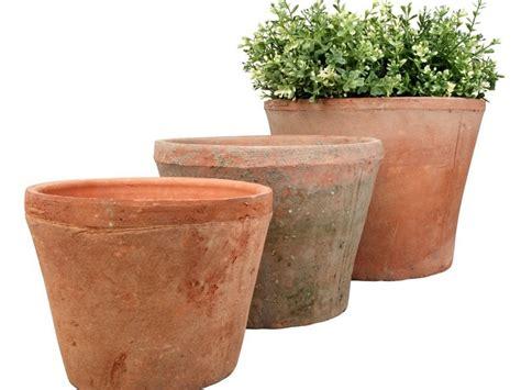 Large Terracotta Planters Uk Home Design Ideas Large Terracotta Planters