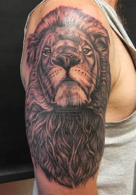 best lion tattoo designs ideas and designs page 2