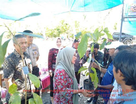 dinas tanaman pangan hortikultura perkebunan