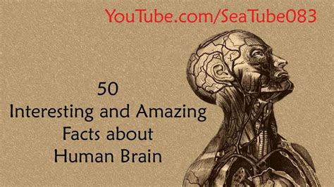 50 wacky things humans do amazing facts about the human wacky series books 50 interesting and amazing facts about human brain