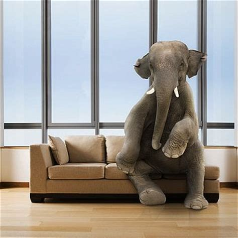 elephant in the room exle gst what s the real elephant in the room power retail
