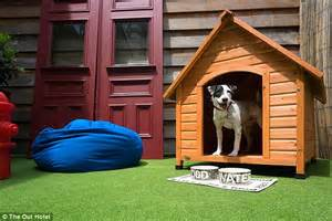 dog house spa sent to the five star doghouse new york hotel offers lavish suites for pered