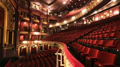 puppy palace nh palace theatre manchester all you need to before you go with photos