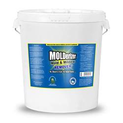 Car Upholstery Water Stain Removal Molderizer Mold Professionals Non Toxic Mold Remover 5 Gallon
