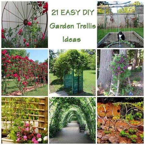 Ideas For Trellis In Garden 21 Innovative And Easy Diy Garden Trellis Ideas Gardenoid