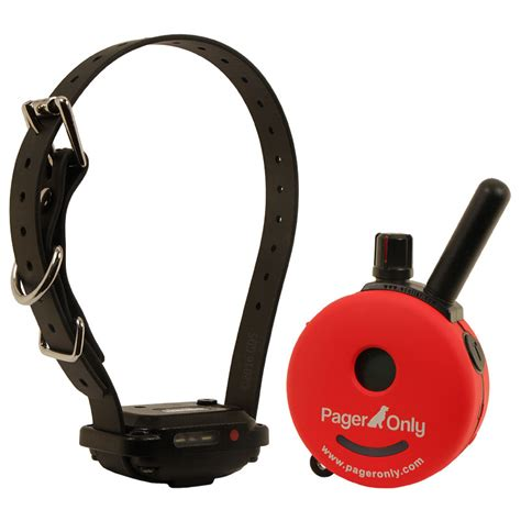 e in dogs e collar technologies pager only pg 300 1 189 99 free shipping us48