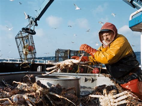 types of crab caught on deadliest catch deadliest catch new boat design promises safer fishing