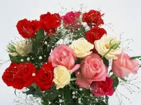 the best flowers romantic flowers romantic flowers