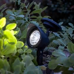 Best Solar Led Landscape Lights Solar Led Garden Spotlight Lights4fun Co Uk