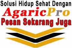 Agaricpro Di Bandung obat stroke ringan akibat darah tinggi agaricpro ku