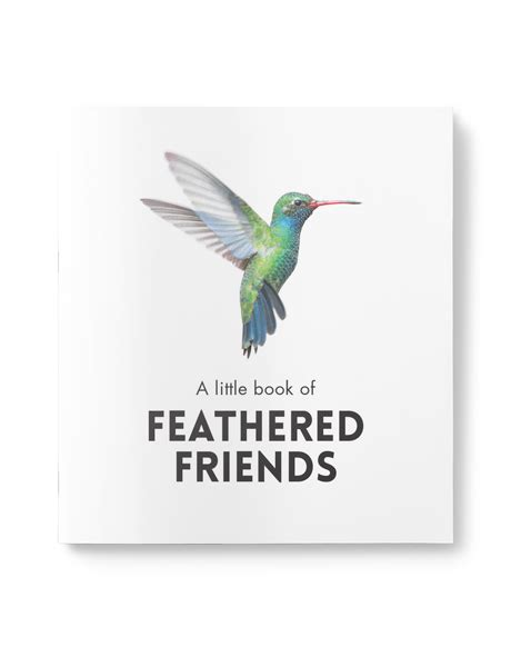 feathered friends books book of feathered friends affirmations publishing