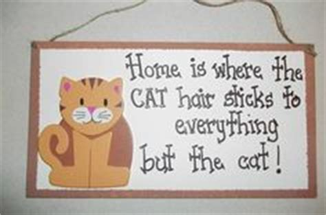 Signage Cat Anjing Kucing Pet A House Is Not A Home Without Paw 1000 images about pet signs cats on cat hair wood signs and cats