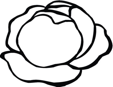 Lettuce 5 Coloring Page Supercoloring Com Lettuce Coloring Page
