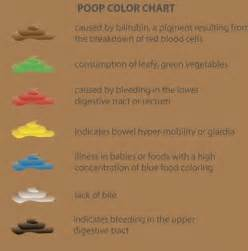 pale stool color bowel movement chart with explanation 2017 2018 best