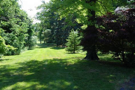 backyard view grounds