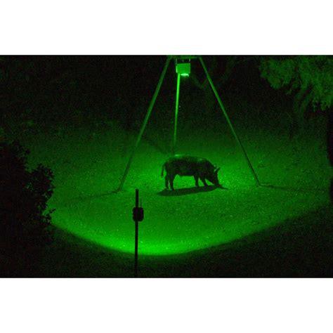 best hog hunting lights blind r feeder bait light motion activated feeder