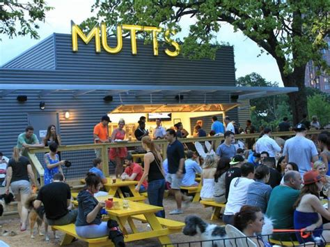 top bars in dallas tx the 10 best new patios in dallas to drink and dine