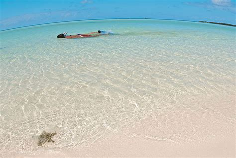 Catok Cocco tours and excursions in cayo coco cuba nexustours