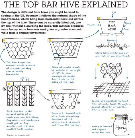 how to build a top bar hive 17 best images about top bar bees on pinterest honey
