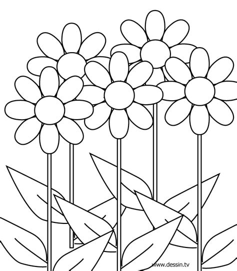 Flower Coloring Pics Flower Coloring Page Colouring Pages Of Flowers