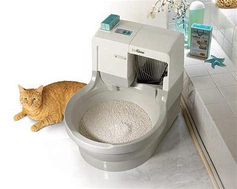 lettiere per gatti catgenie lettiera autopulente per gatti