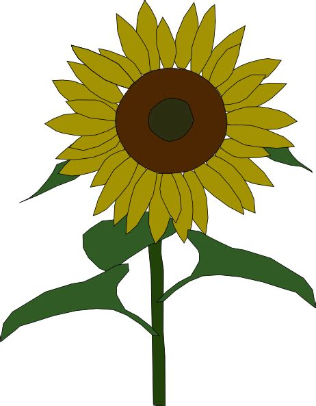 Sunflower Outline Png by Sun Flower Clip At Clker Vector Clip Royalty Free Domain