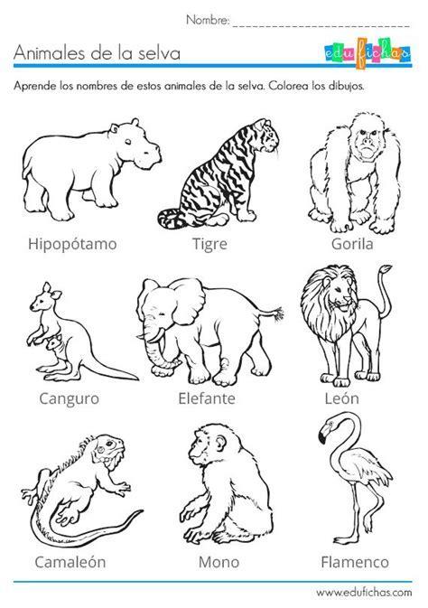 Best 25  Dibujos de la selva ideas on Pinterest   Animales en la selva, Animales de la selva and
