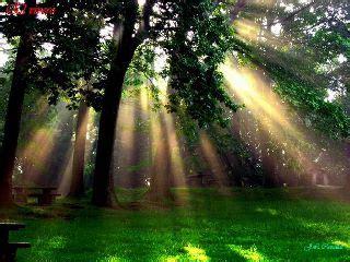 imagenes espirituales catolicas taller pr 225 ctico la espiritualidad un camino de sanaci 243 n