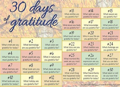 30 Days Of reviews by martha s bookshelf 30 days of gratitude