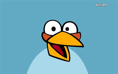 angry birds blue angry birds wallpaper 28211872 fanpop