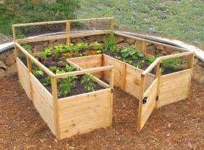 garten bett grow your favorite fruits and veggies at home with these