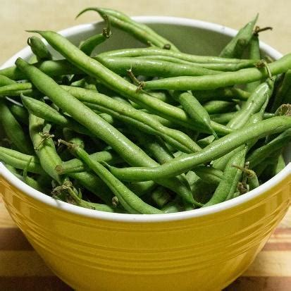 are green beans bad for dogs 6 thanksgiving foods that aren t pet safe and 6 that are project pawsitivity