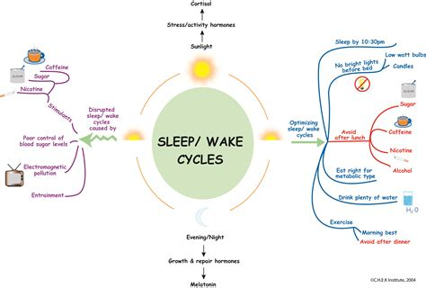 sleep pattern wake up how tired are you sleep your most important recovery tool