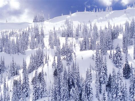 winter themed pictures winter themed wallpapers wallpaper cave