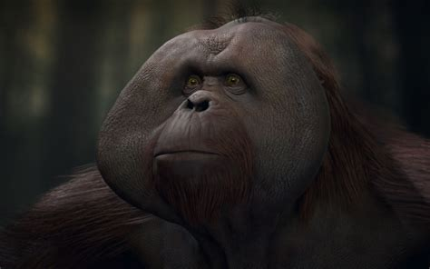 clarence planet   apes wiki fandom powered  wikia