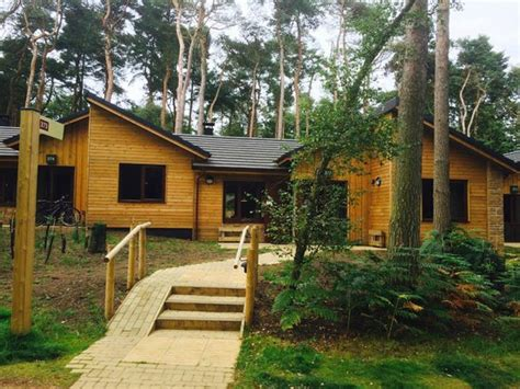 3 bedroom woodland lodge center parcs lodge in oak area picture of center parcs woburn forest