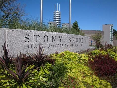 Mba Stony Brook Tuition by Top Marine Biology Colleges In The Us