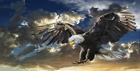 eagles background eagles desktop backgrounds wallpaper cave