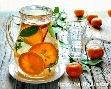 fruit 02 water 19 herb fruit infused water recipes herbs for health