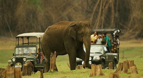 tourist places  visit  coorg travel triangle