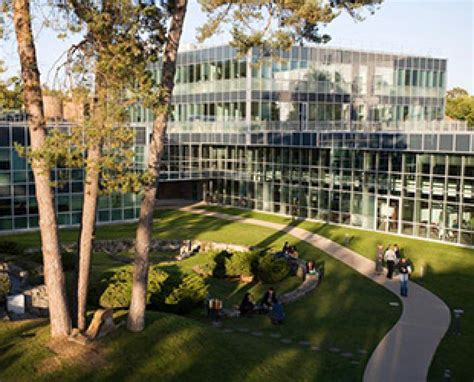 Insead Mba Barcelona by Report On Counselling Career Guidence Education The