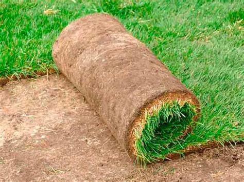 prezzo tappeto erboso tappeto erboso a rotoli prezzi 28 images tutte le