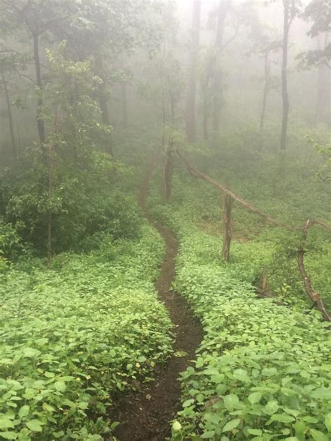 best section of appalachian trail 17 best images about appalachian trail photos on pinterest