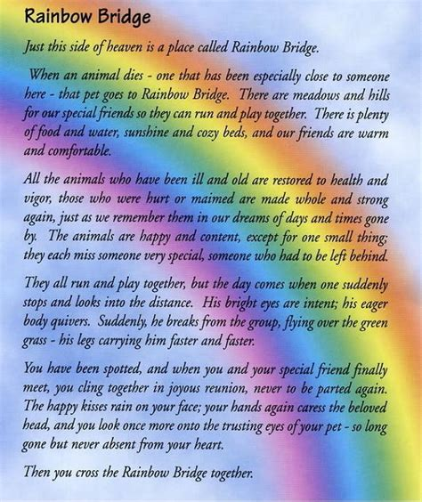 rainbow bridge poem r i p jazz you will be greatly missed pics