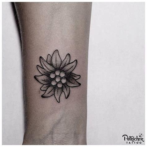 edelweiss tattoo best 25 edelweiss ideas on bloom