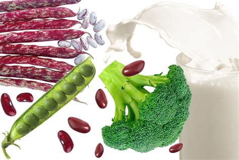 alimenti fanno allo stomaco pancia gonfia alimenti da evitare