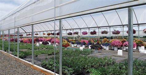 nursery facility layout efficient greenhouse design american nurseryman