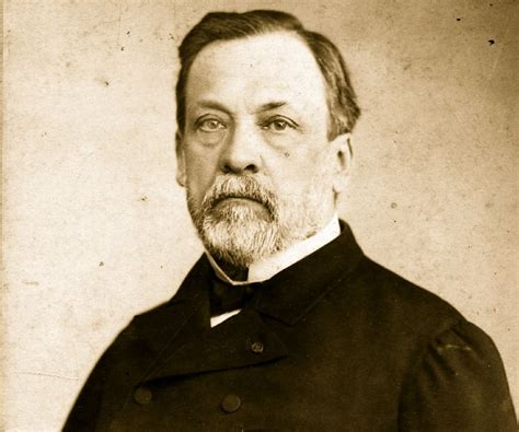 Biography Louis Pasteur | louis pasteur biography childhood life achievements