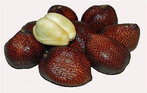 manfaat dan jenis buah buahan buah tugas 3