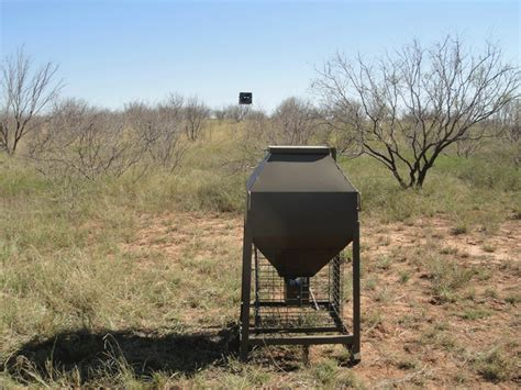 Best Deer Feeder Reviews deer feeder reviews deer forum